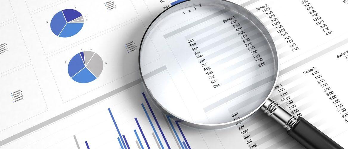 Goverment Tax Audits
